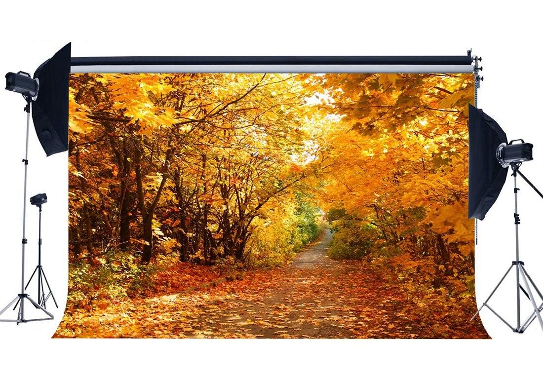[해외]Autumn Backdrop Jungle Forest Trees Backdrops Golden Leaves Nature Outdoor Photography Background/Autumn Backdrop Jungle Forest Trees Backdrops Go